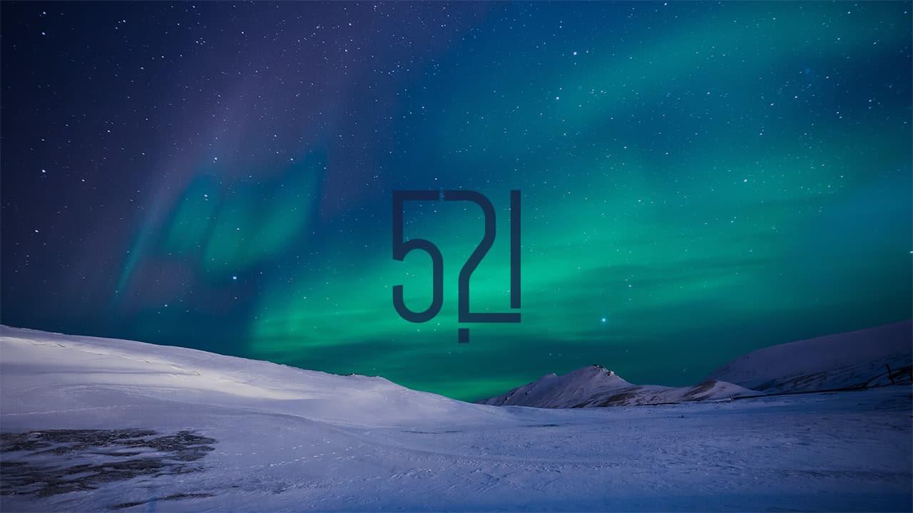 31.Bölüm